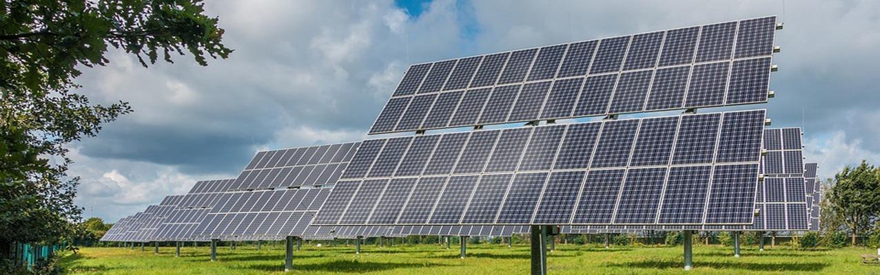Solarplatten auf einer Grünfläche