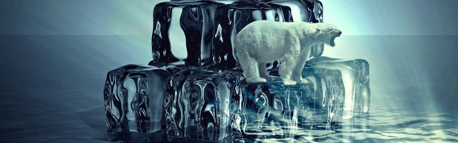 Eisbär steht auf schmelzendem Eisberg