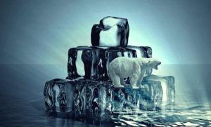 Der nationale CO2-Preis im Detail – eine Maßnahme zur Erreichung der Klimaziele